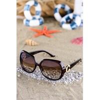 Silvio Monetti Erkek Güneş Gözlüğü Sm-5030R002