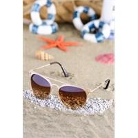 Silvio Monetti Kadın Güneş Gözlüğü Sm-5681R003