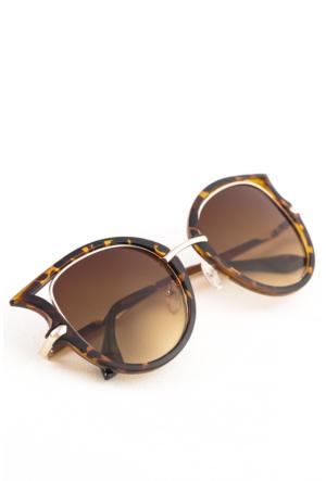 Polo55 Kadın Güneş Gözlüğü - Polo17Xr8528Ar002