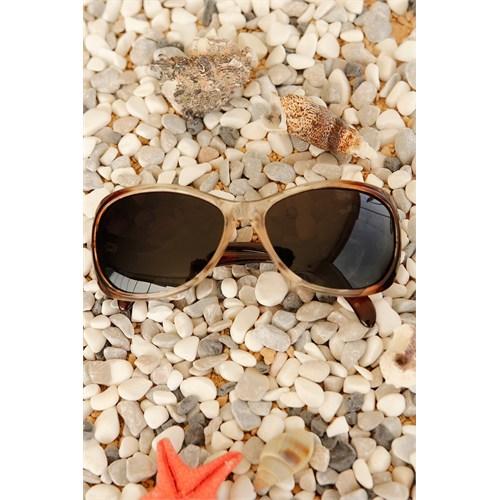Morvizyon Clariss Marka Kahverengi Tonları Tasarımlı Unisex Güneş Gözlük Modeli