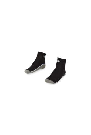 Lescon La-2193 Tenis Çorap (40-45)-2 Li