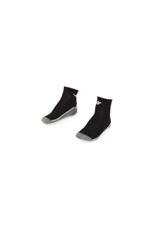 Lescon La-2194 Patik Çorap (36-40)-2 Li