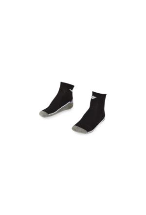 Lescon La-2194 Patik Çorap (40-45)-2 Li