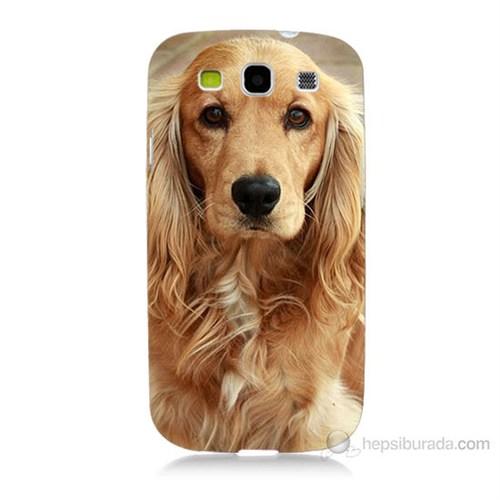 Teknomeg Samsung Galaxy S3 Köpek Baskılı Silikon Kılıf