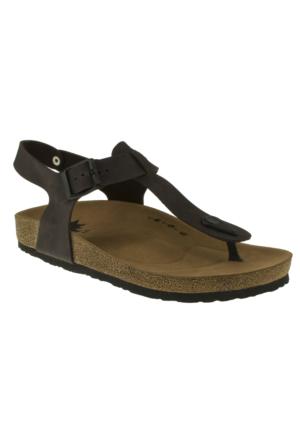Twigy H0603 Sanda P.a Kahverengi Kadın Sandalet