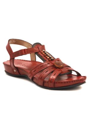Forelli 9639 Terlik-Sandalet
