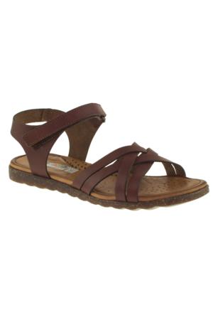 Toddler 4430 Tek Cırt Kahverengi Çocuk Sandalet