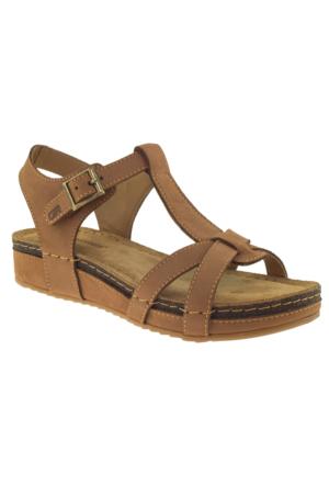 Greyder 50210 Zn Urban Casual Taba Kadın Sandalet