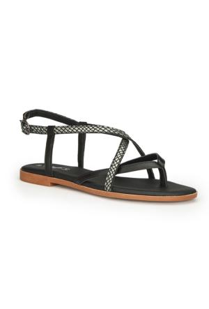Polaris 71.310169.Z Siyah Kadın Sandalet