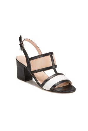 Miss F Ds17057 Siyah Kadın Ayakkabı 397