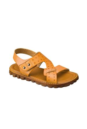 Vicco Cırtlı Erkek Sandalet Taba