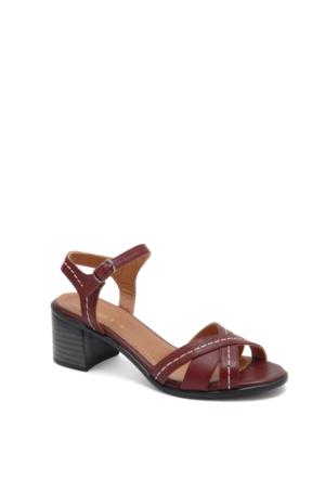Beta Kadın Sandalet 304876