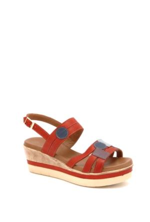 Beta Kadın Sandalet 304862