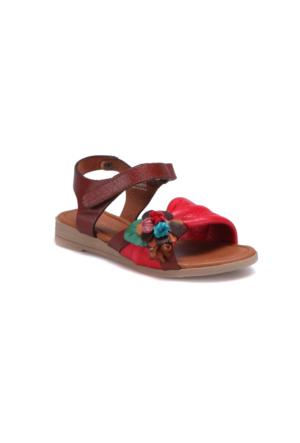 Polaris 71.509287.P Kırmızı Kız Çocuk Deri Basic Sandalet