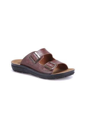 Flexall Bess M 1602 Kahverengi Erkek Klasik Ayakkabı
