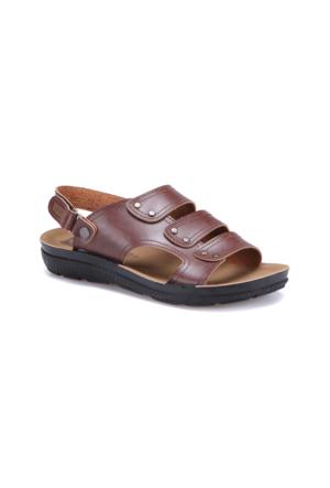 Flexall Hody M 1602 Kahverengi Erkek Klasik Ayakkabı