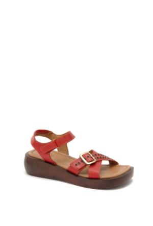 Beta Kadın Sandalet 305631