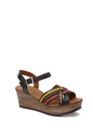 Beta Kadın Sandalet 305430