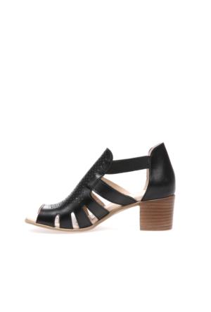 Greyder Kadın Sandalet 7Y2Us51330
