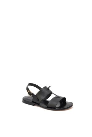 Beta Kadın Sandalet 305384