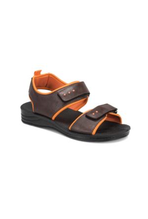 Panama Club Pnm513 Kahverengi Erkek Çocuk Sandalet