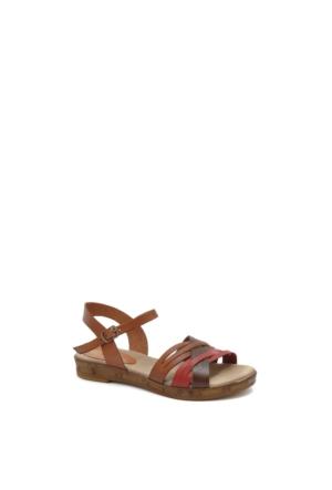 Beta Kadın Ayakkabı 304881