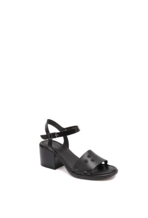 Beta Kadın Sandalet 305456