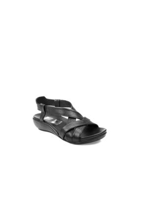 Ziya Kadın Hakiki Deri Sandalet 7176 9038 Siyah