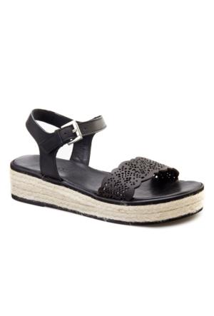 Cabani Nakış Lazerli Tokalı Günlük Kadın Sandalet Siyah Deri