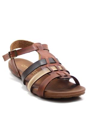 Cityzen 749 Kadın Deri Sandalet
