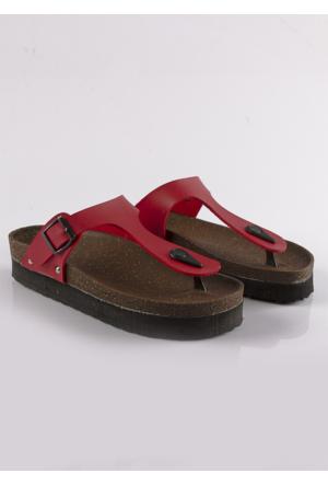 Shoepink Santa Terlik