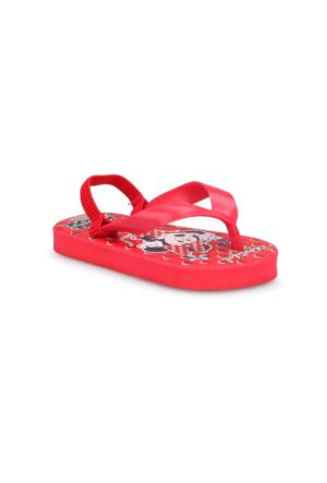 Mickey Mouse 90560T Kırmızı Kız Çocuk Terlik