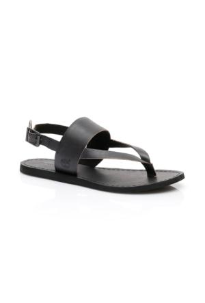 Timberland Carolista Kadın Siyah Terlik & Sandalet CA1G5K