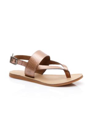 Timberland Carolista Kadın Gri Terlik & Sandalet CA1BBE