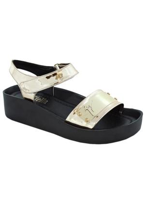 Stella 7040 Kadın Sandalet Altın