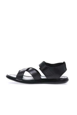 Greyder Erkek Sandalet 7Y1Cs61180