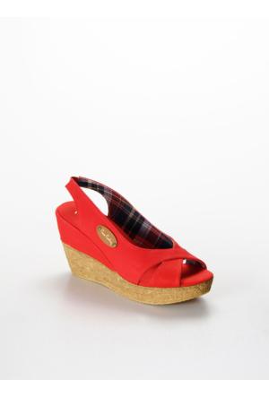 Pierre Cardin Günlük Kadın Sandalet PC-0711.RR1