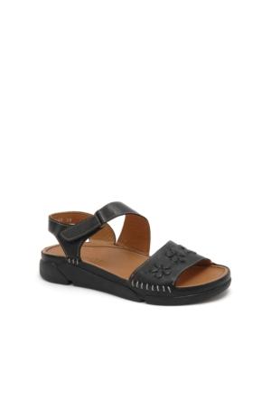 Beta Kadın Dolgu Topuk Sandalet 304478