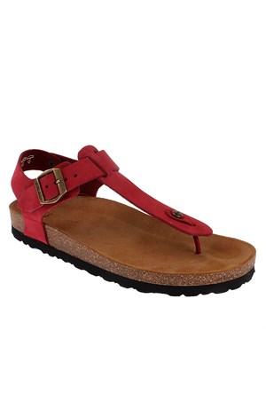 Frau Nabuk V 58G2 Kadın Ayakkabı Cılıegıa