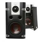 Dali Lektor 1 Profesyonel Ses Sistemi Hoparlörü (2'li Takım) (Siyah)
