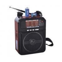 Everton RT-809 Mikrofonlu USB-SD-FM-AM-SW Müzik Kutusu