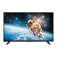 Regal 48 R 6012 F Led Tv