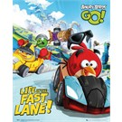 Angry Birds Racing Mini Poster
