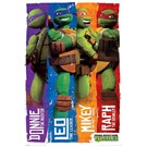 Ninja Turtles Team Mini Poster