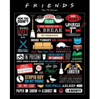 Pyramid International Mini Poster Friends Infographic Mpp50659