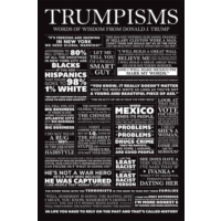 Pyramid International Maxi Poster Trumpisms Pp33998