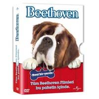 Beethoven 5 DVD Box Set
