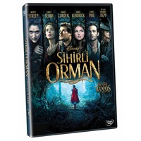 Into The Woods (Sihirli Orman) (DVD)