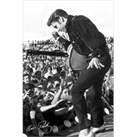 Elvis Stage Maxi Poster