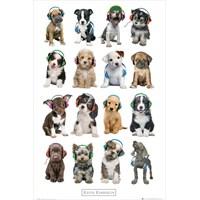 Keith Kimberlin Puppies Headphones Maxi Poster
